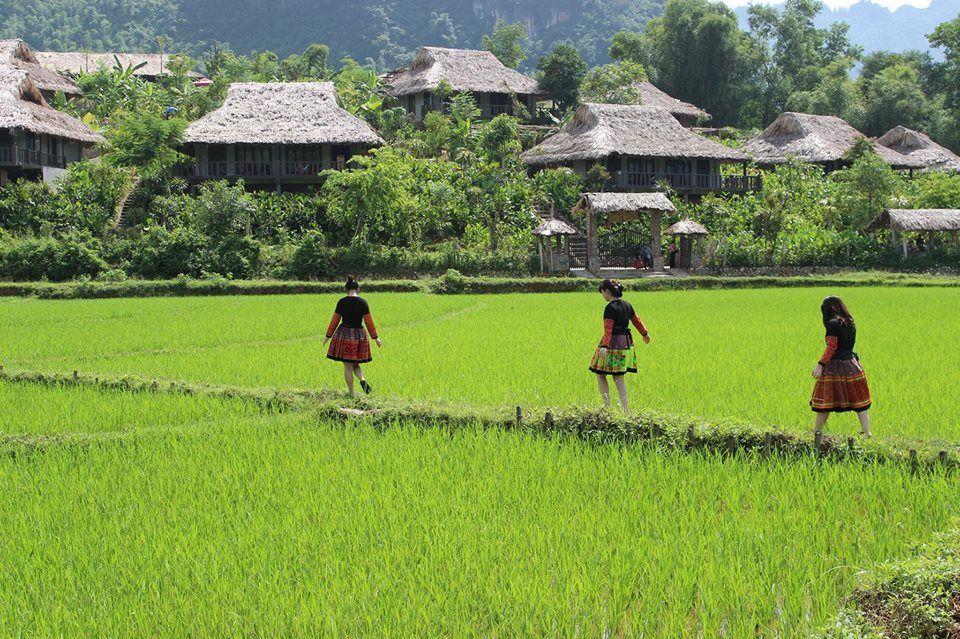 Mai Chau Ecolodge overview 06